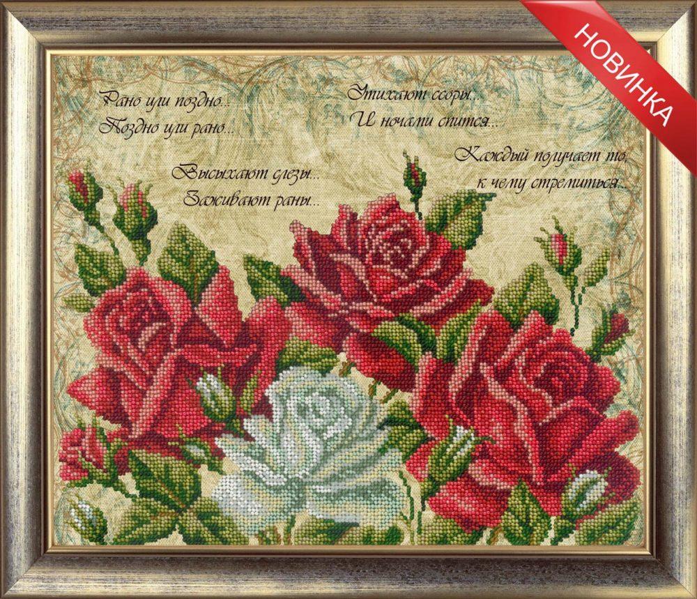 слова и розы новинка